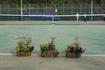 「第13回テニスイベント」~団体戦~開催報告